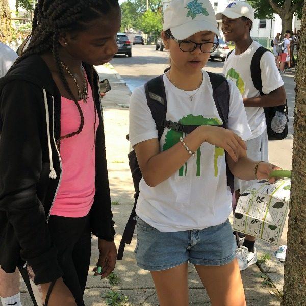 Teens identifying a street tree